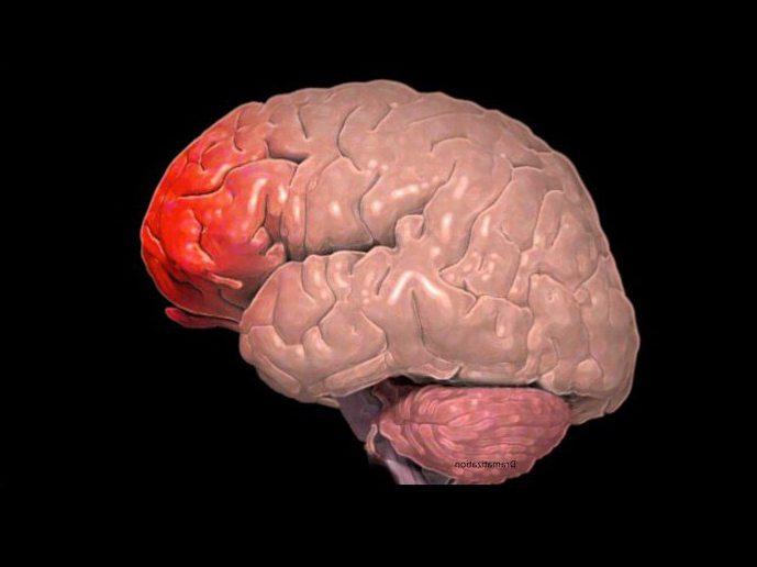 Кома после черепно-мозговой травмы у детей